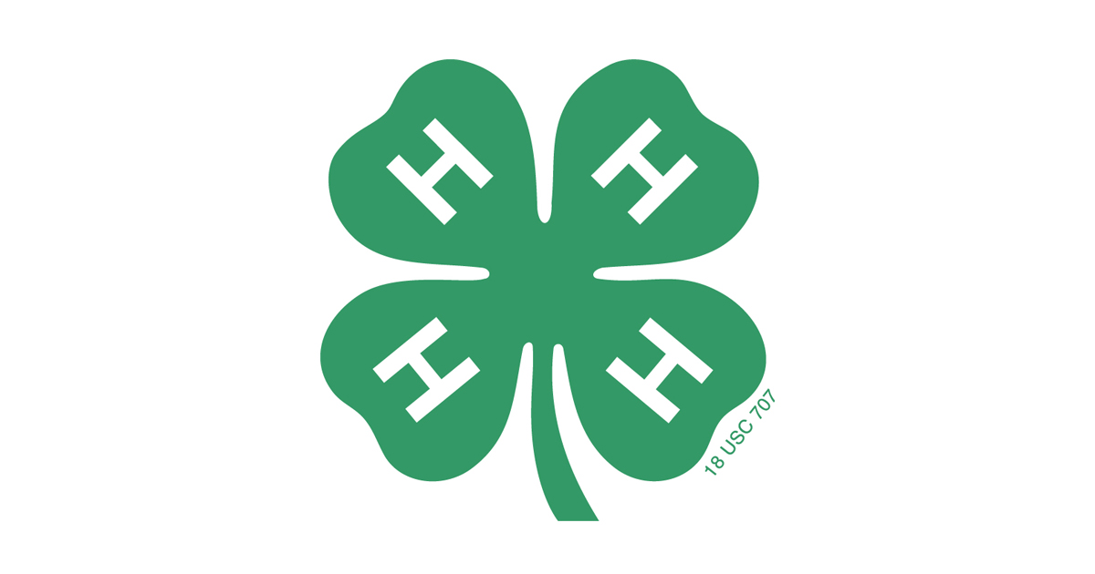 4 H Expert Series: Lori Dawson, U.S. Cellular Engineer, On Empowering The  Next Generation Of STEM Leaders | 4 H