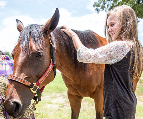 A girl petting a horse