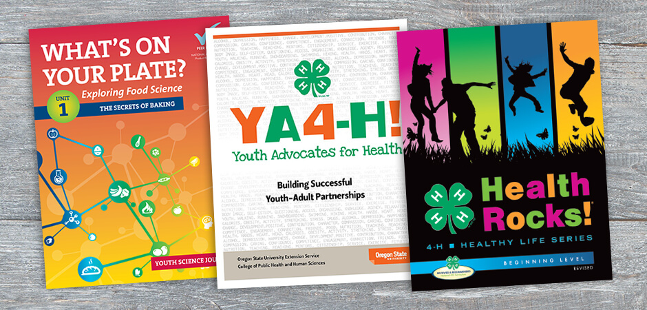 4-H Mall healthy living curriculum