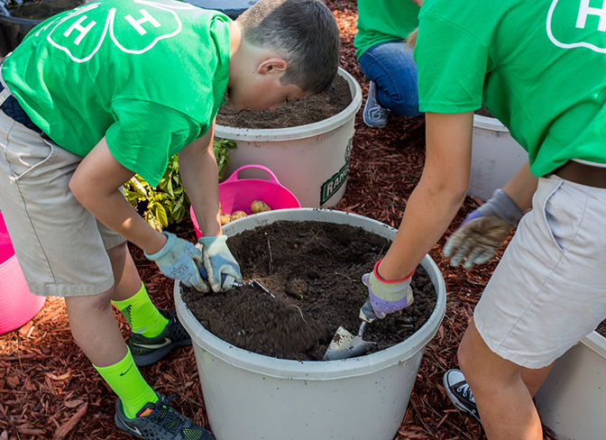 4-H youth doing an agriscience composting activity