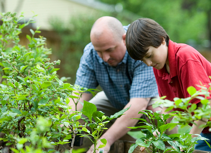 4-H mentor and youth gardening outside