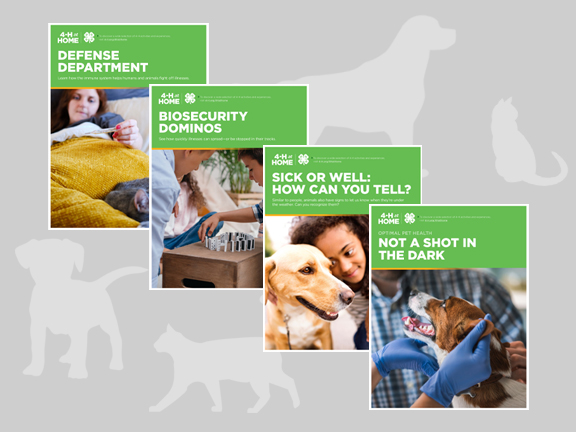 Veterinary Science: Stopping Sickness activity guide covers